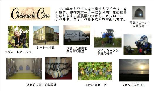 1864年からワインを生産するワイナリーを引き継ぎ、現在のオーナーになり約10年の歴史となります。減農薬の畑から、メルロー、カベルネ、プティベルドなどを生産します。 円錐(コーン)の飾り窓 マダム・レパージュ シャトー外観 収穫した果実を専門車で輸送 ダイナミックな収穫の様子 近代的で衛生的な設備 畑のメルロー種 ジロンド河の夕日